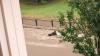 Житель Донецка снял на видео, как женщину уносит потоком ливня