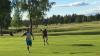Лось устроил погоню за гольфистом прямо на поле: видео