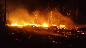 После пожара на кладбище Святого Лазаря в мэрии созвали экстренное совещание