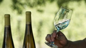 Исследование о пользе вина назвали заказным