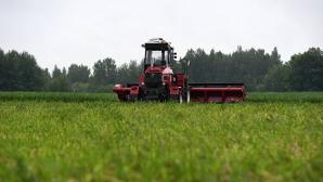 Многие фермеры жалуются на нехватку сезонных рабочих