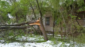В столице продолжают ликвидировать последствия апрельских снегопадов