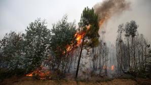 Пожары и наводнения: погода бушует в разных уголках мира