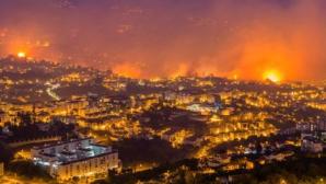 В центральной Португалии вновь разгорелись пожары