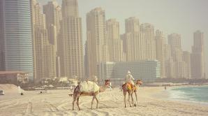 Граждане Молдовы смогут путешествовать в Объединённые Арабские Эмираты без виз