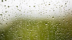 12 июля в республике ожидаются дожди с грозами