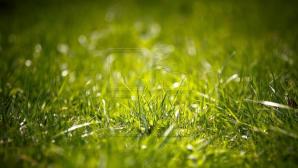 С 11 июля и до конца недели по всей стране ожидаются кратковременные дожди с грозами