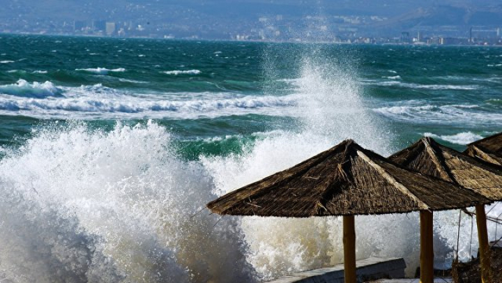 Мужчина и ребёнок утонули при нырянии с катамарана под Анапой