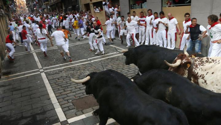 Зоозащитники топлесс потребовали запретить забег с быками в Испании
