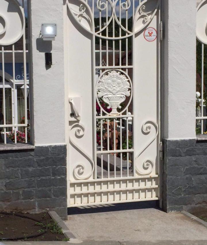 Вице-председатель партии DA незаконно подключила дом к водопроводу