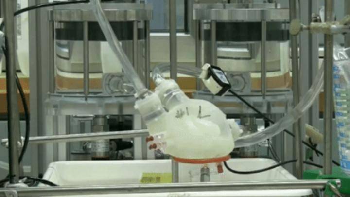 Учёные напечатали мягкое искусственное сердце на 3D-принтере