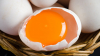 В Испании обнаружили 20 тонн отравленных яиц