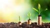 Молдавская экономика будет расти в среднем на 4% ежегодно