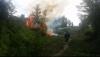 Пожар на Ботанике потушили