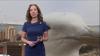Гигантская чайка ворвалась в прямой эфир прогноза погоды