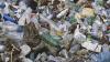 Мусорный скандал в селе Шестачь: местные жители поспорили с мэрией