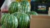 Потребление арбузов и дынь часто становится причиной аллергических реакций