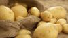 Мексика запрещает поставки картофеля из США
