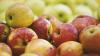 Что нельзя делать на Яблочный Спас