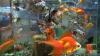 Ученые узнали, как запои помогают золотым рыбкам месяцами жить без воздуха