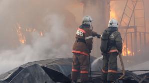 В Петербурге дети задохнулись при пожаре, пока родители гуляли с собакой