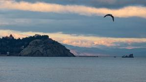 Археологи из Петербурга отыскали на дне Черного моря сокровища Акры