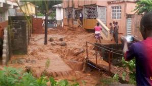 Число жертв оползня в Сьерра-Леоне выросло почти до 500 человек