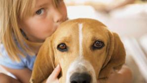 Учёные опровергли теорию о том, что домашние животные полезны для детей