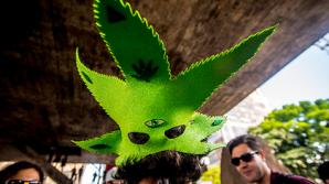 Названа новая опасность марихуаны
