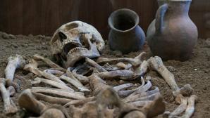 Ученые принялись за расследование случая древней массовой эпидемии на Урале