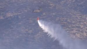 Грецию охватили масштабные лесные пожары