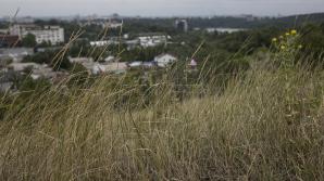 В Молдове по-прежнему действует желтый код метеоопасности из-за непогоды