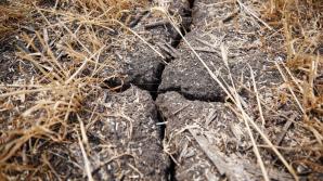 Уровень влияния глобального потепления на Молдову оценивается как средний