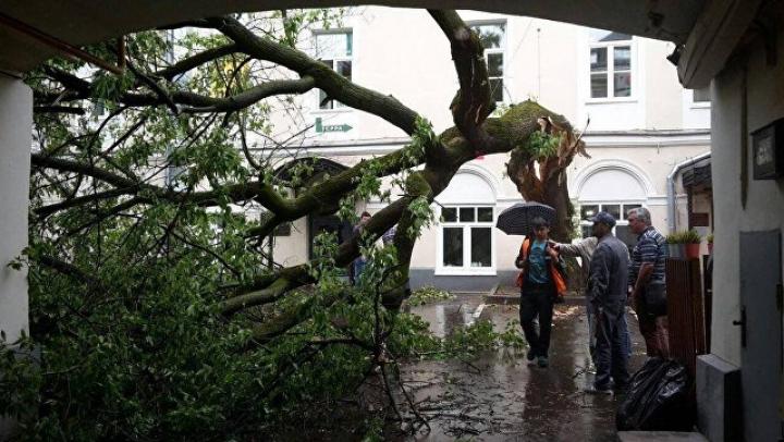 Четыре человека погибли от урагана в Польше