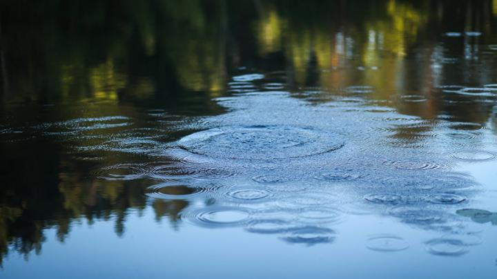 В Тверской области неизвестные выкачали пруд ради песка со дна