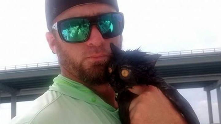 Рыбак случайно спас из залива кошку, от которой пытались избавиться