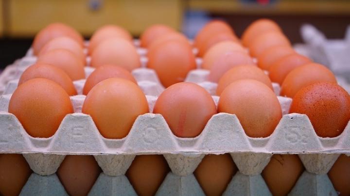Зараженные яйца нашли еще в двух странах Европы