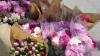 Десятки родителей и детей отправились за цветами для учителей накануне 1 сентября