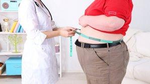 Учёные научились превращать плохой жир в хороший