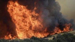В Калифорнии вновь бушуют лесные пожары
