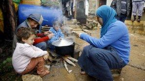 Учёные: От голода страдают более 800 миллионов человек
