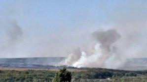 В Яловенах загорелась сухая трава, с пожаром борются три пожарных расчёта