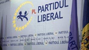 Либералы хотят опротестовать закон о переходе к смешанной избирательной системе