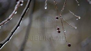 На Молдову надвигаются похолодание и заморозки