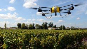 Молдавские виноградари смогут использовать в хозяйстве беспилотные дроны