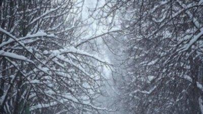 В Румынии выпал первый снег: фото
