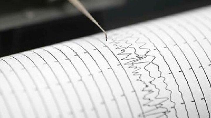 Землетрясение магнитудой 5,8 произошло в Тихом океане