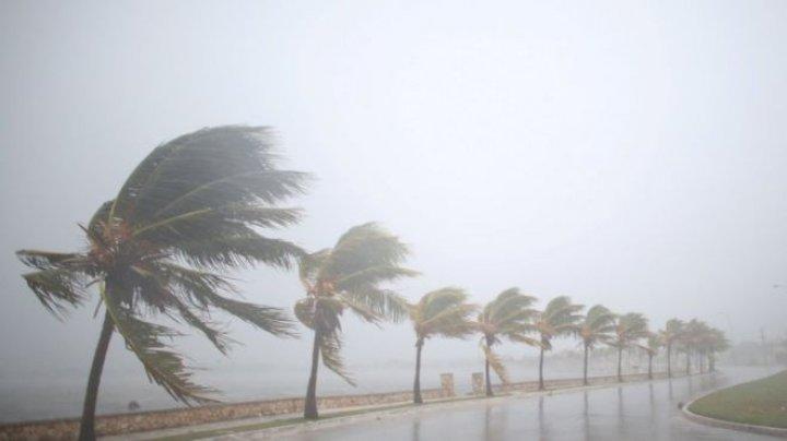 Трамп объявил во Флориде режим крупного стихийного бедствия