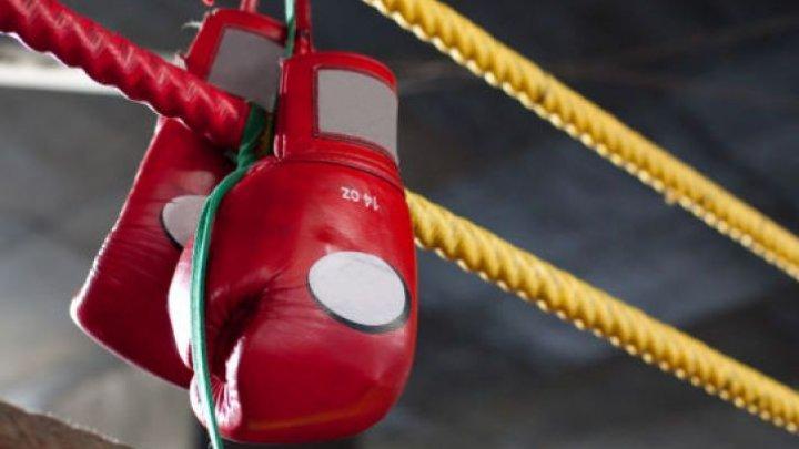 Боец ММА напал на судью во время боя: видео