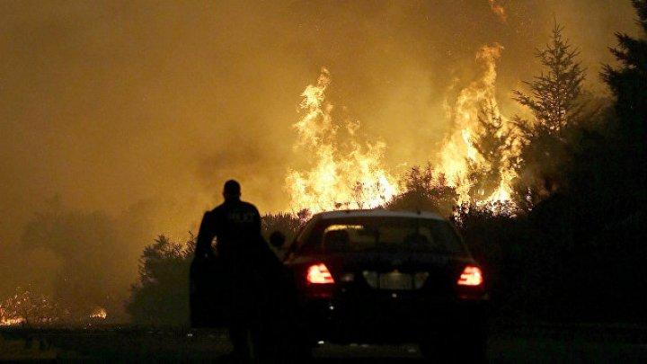 Пара, прожившая вместе 75 лет, погибла во время пожара в Калифорнии